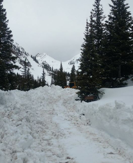 Yankee Boy Basin Road Clearing Operations May 2017